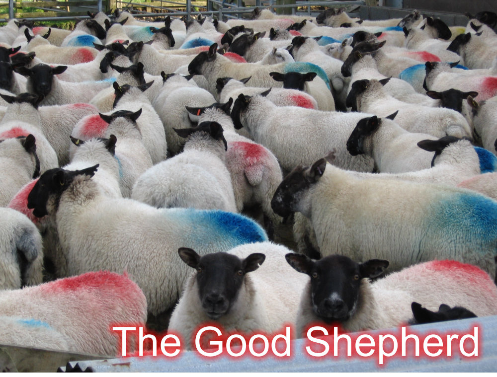Good Shepherd – Sunday 3rd May 2020 – Family Service